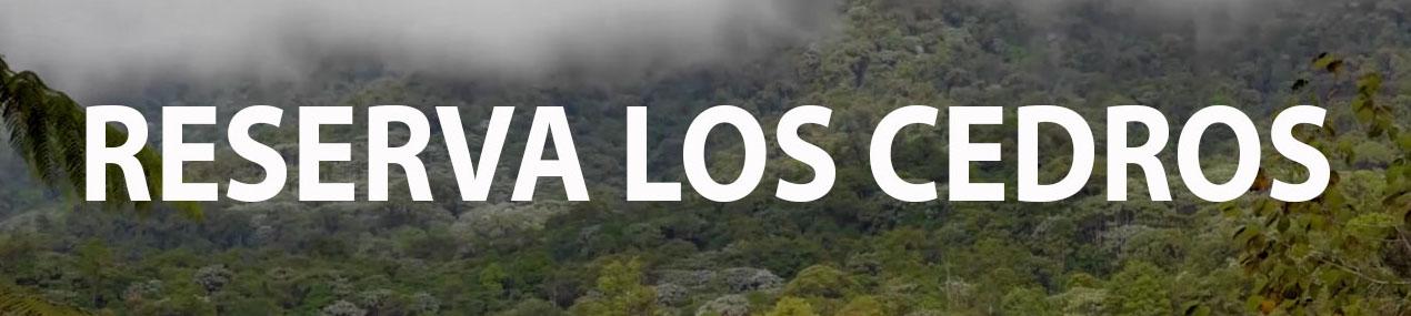 Los Cedros Reserve